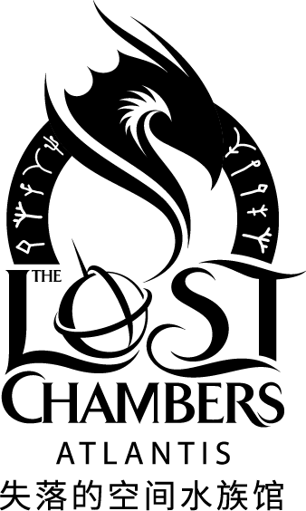 The Lost Chambers Logo Black